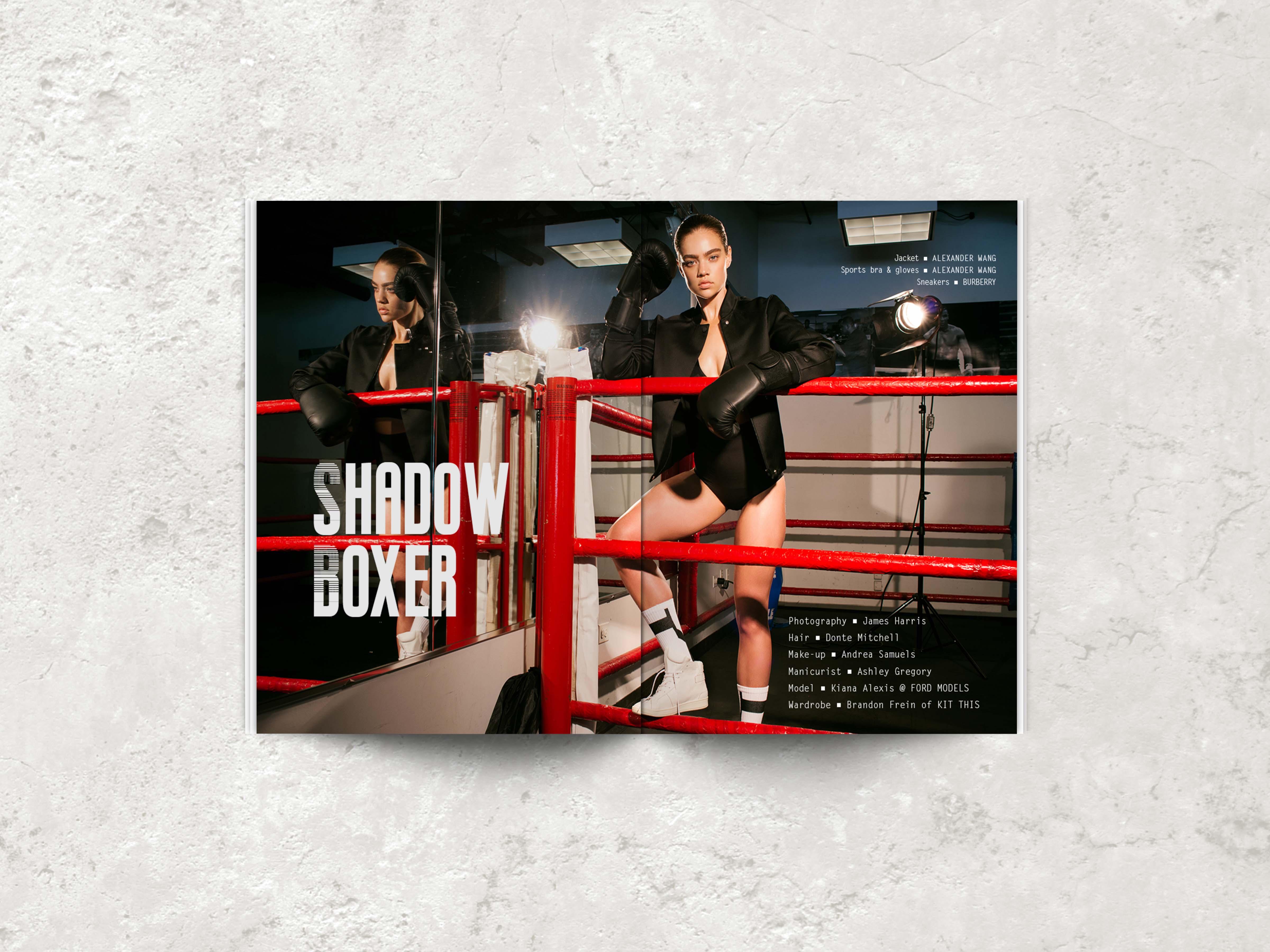 shadow-boxer_a
